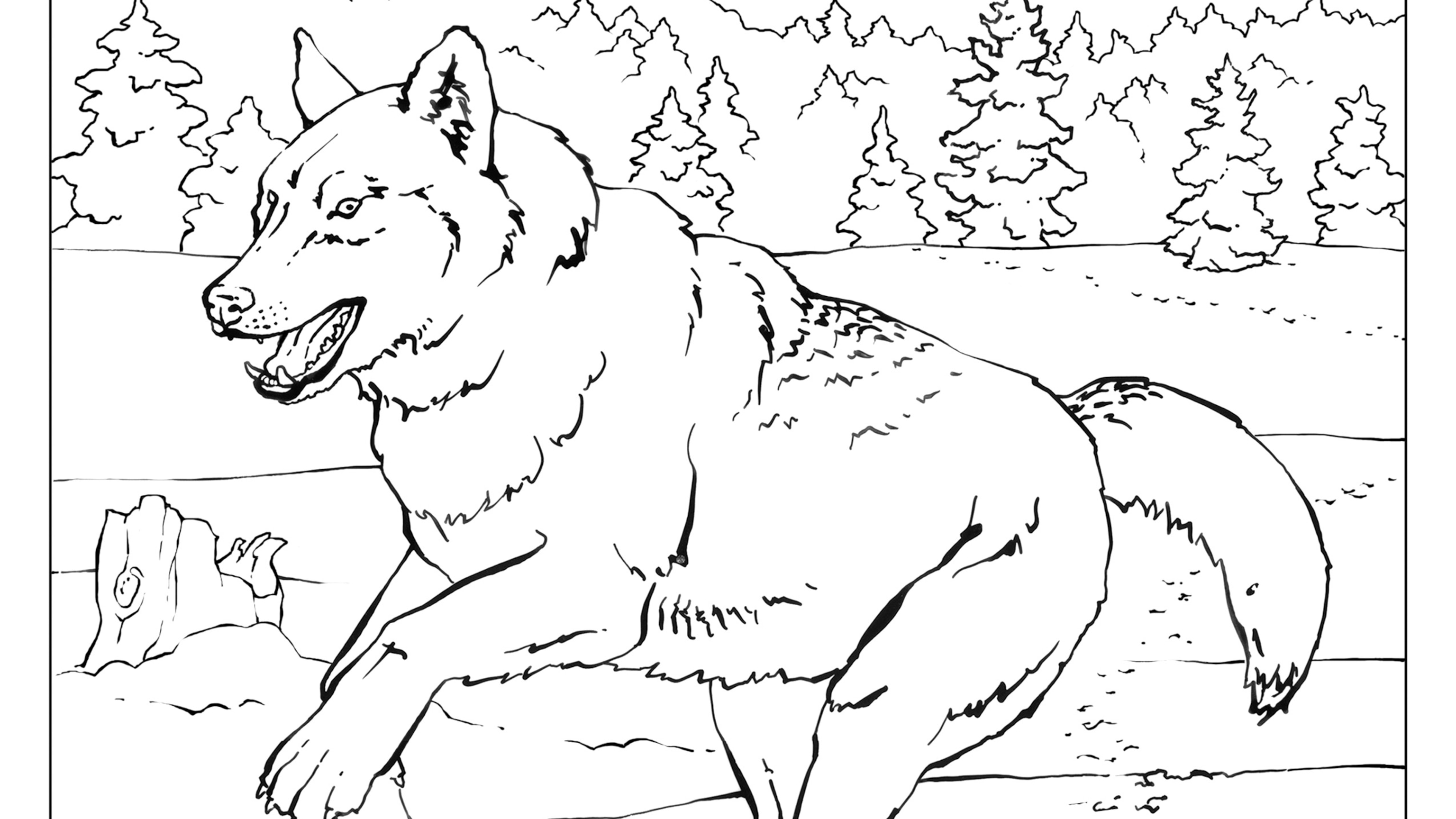 Coloring Book: Animals (A To I)
