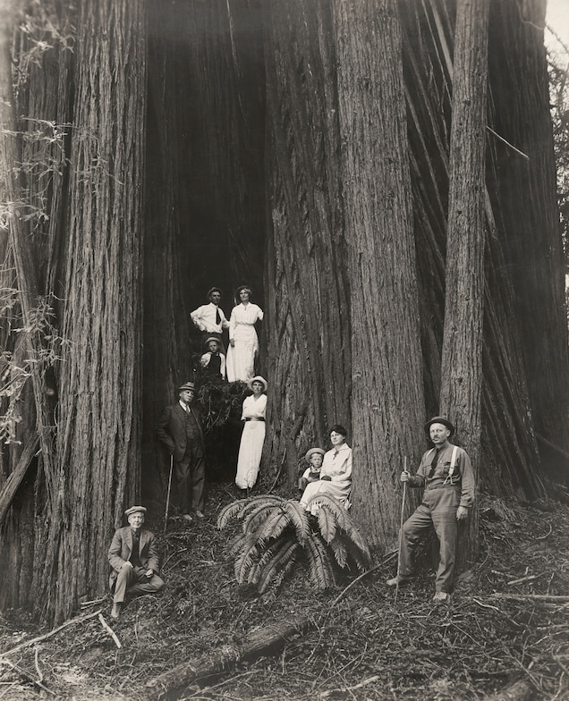 <p>Men, women, and children pose in front of giant redwoods. Some women, frustrated by the challenge of receiving passports issued in their own names, formed the Lucy Stone League to advocate for women's use of their maiden names after marriage.</p>