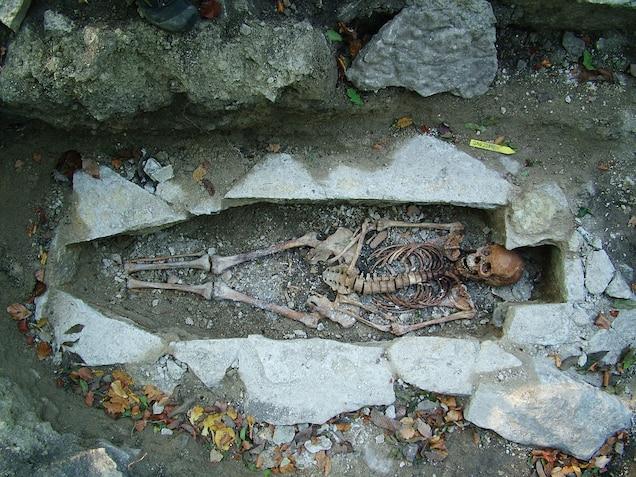 single-viking-skeleton.jpg?w=636&h=477