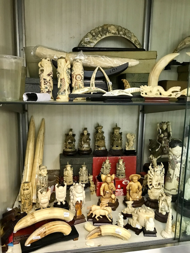 Hippo teeth and carvings are widely for sale in Hong Kong. Photograph by Alexandra Andersson