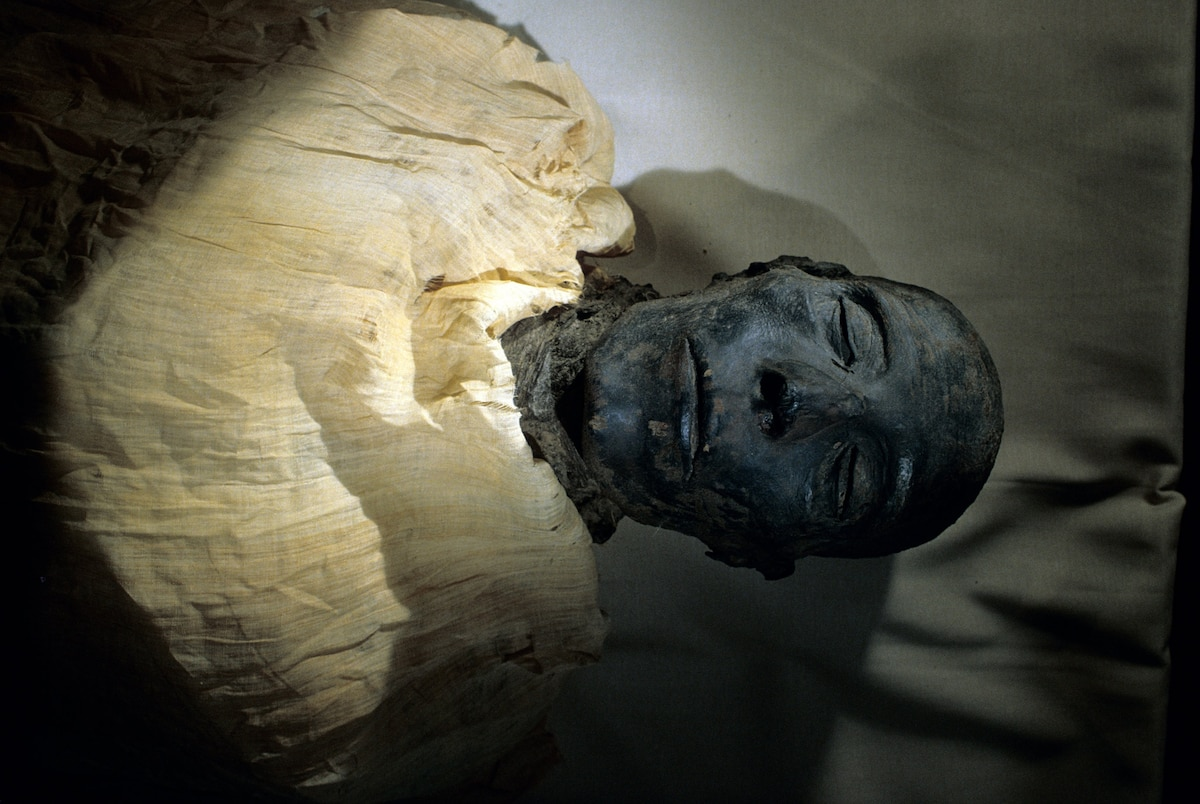 Egypt's royal mummies are on the move, and it's not their first road trip