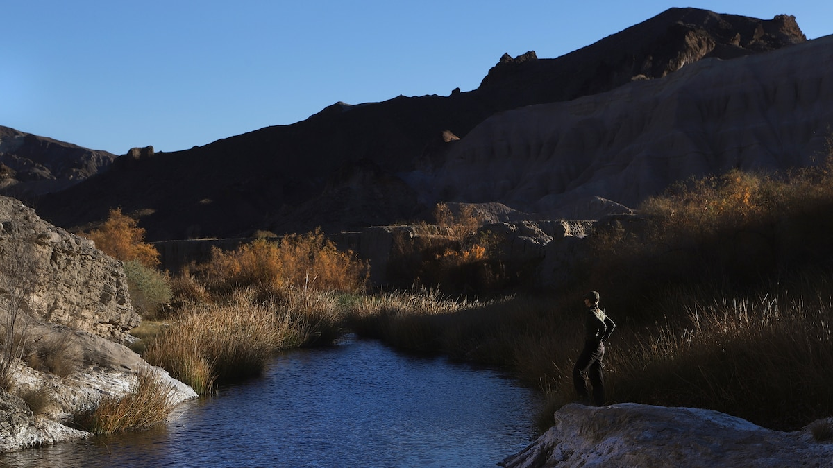 Life on the Amargosa—a desert river faced with drought