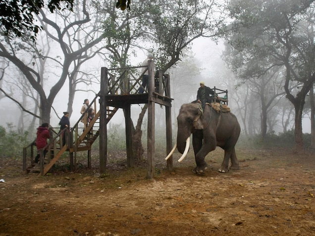Tourists prepare to ride an elephant during a wildlife safari in Chitwan National Park. PHOTOGRAPH BY GEMUNU AMARASINGHE, AP