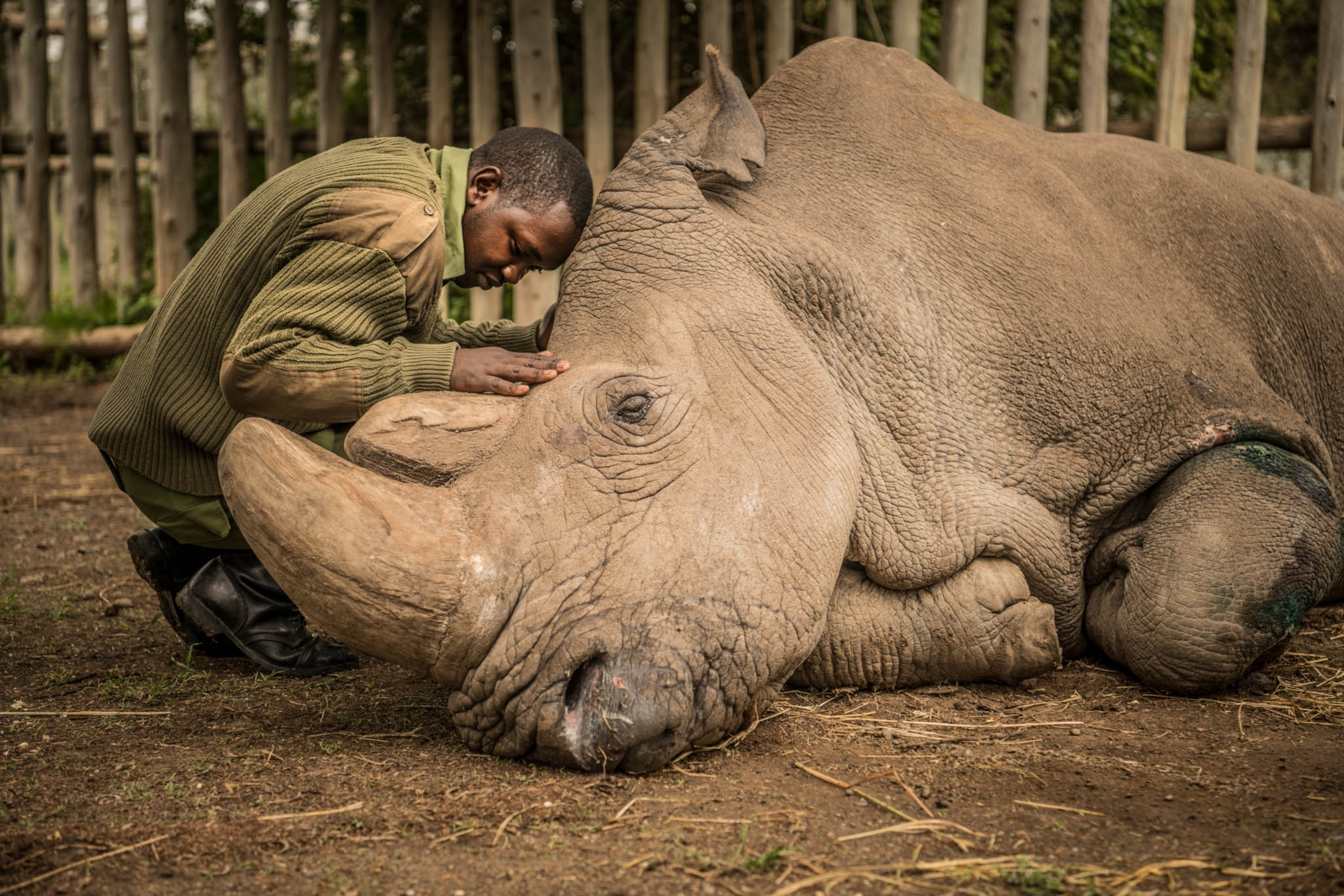 Last of His Kind | Nat Geo Photo of the Day