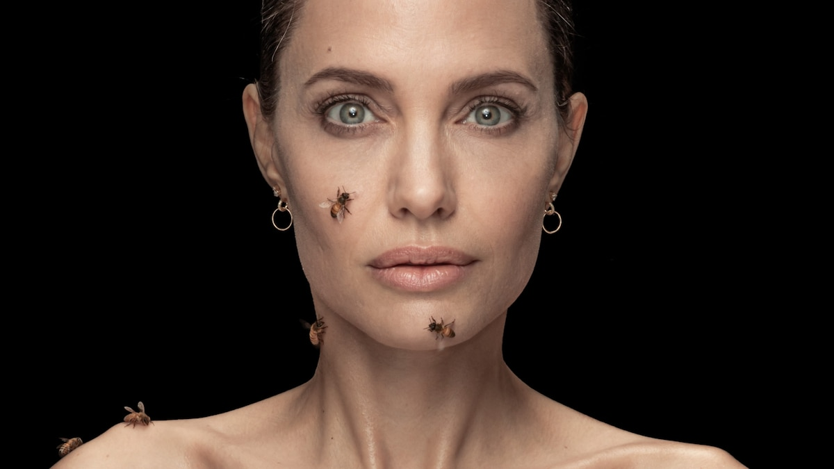 Angelina Jolie embraces bees—and female beekeepers as environmental guardians