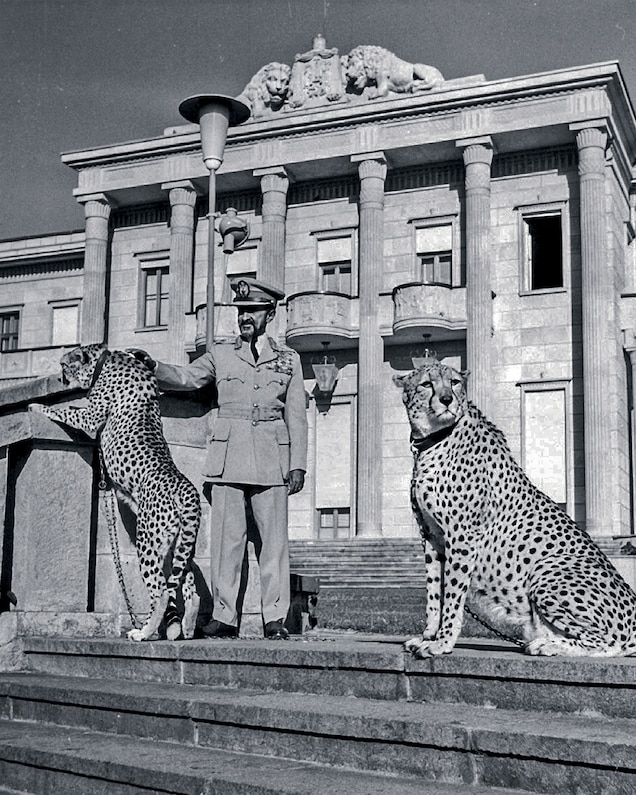 Ethiopia's last emperor, Haile Selassie I, stands with his pet cheetahs at the Jubilee Palace in 1962.