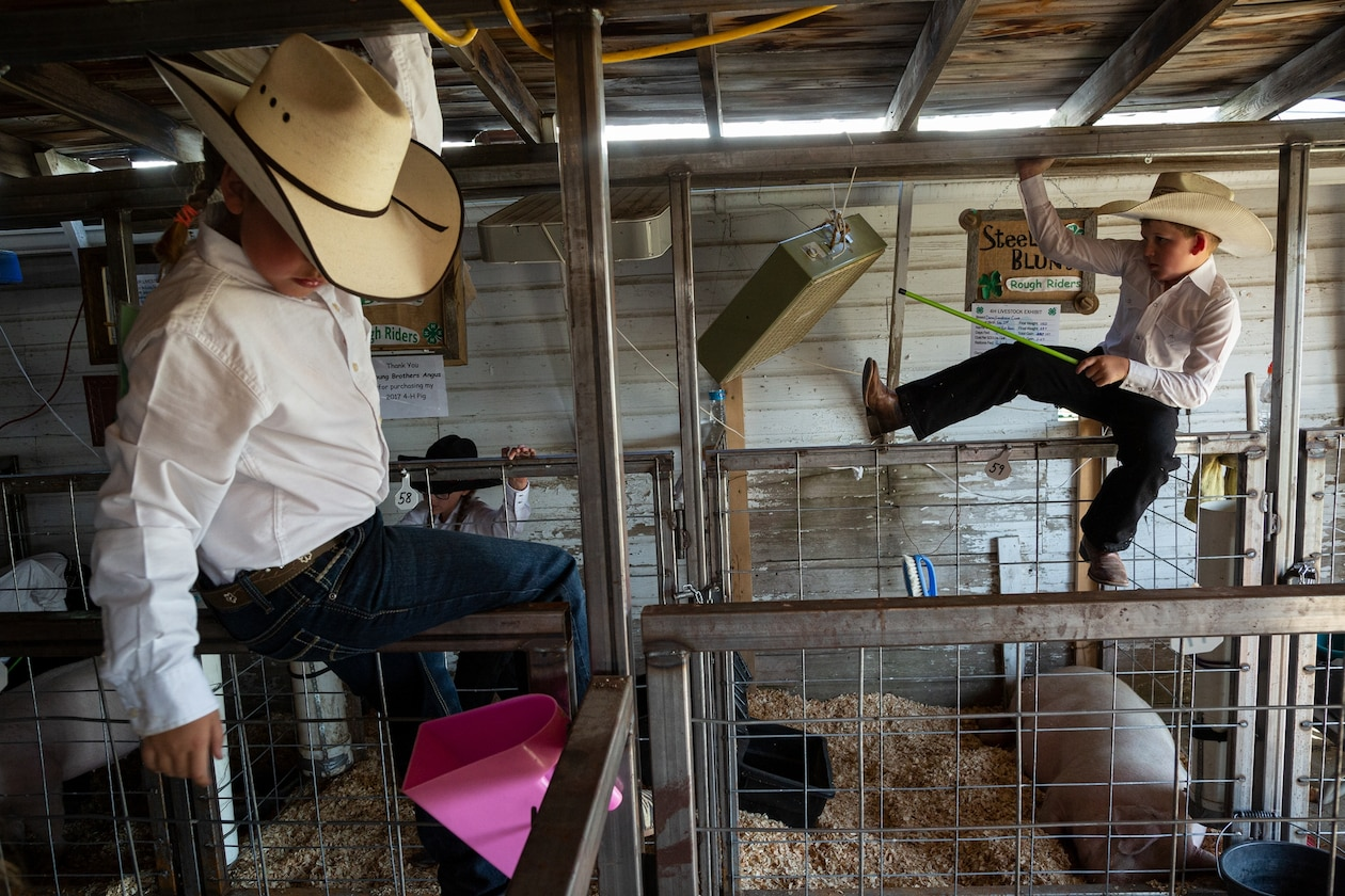 boys in cowboy hats playing along the fences of an indoor pig pen