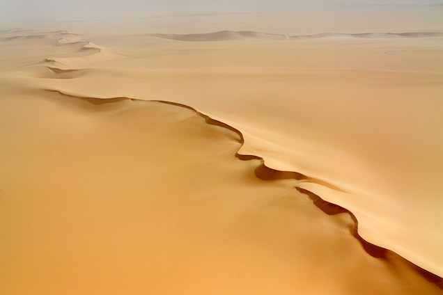 """<p>In the golden sands of Sahara desert, <a href=""""https://whc.unesco.org/en/list/573"""" target=""""_blank"""">Ténéré</a> is the largest protected area in Africa and home to an array of plants and animals, including three threatened species of antelopes.</p> <p>The site was inscribed on the Danger List in 1992 due to political instability, poaching, and illegal grazing.</p>"""