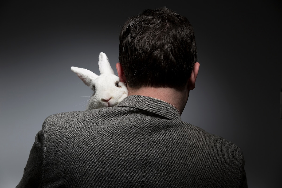 Here's Why Easter Is Bad For Bunnies (2017)