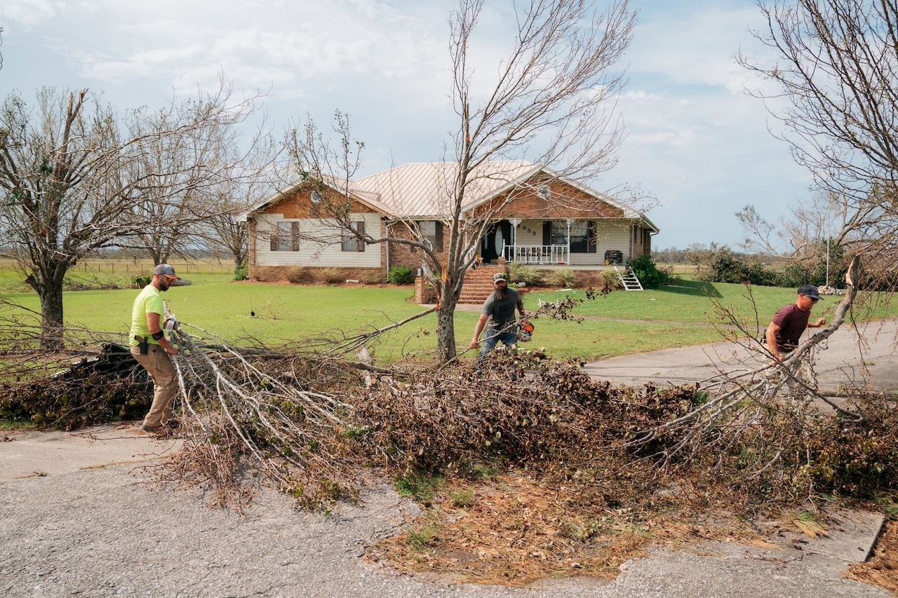 three men work to clear a large fallen tree from a road