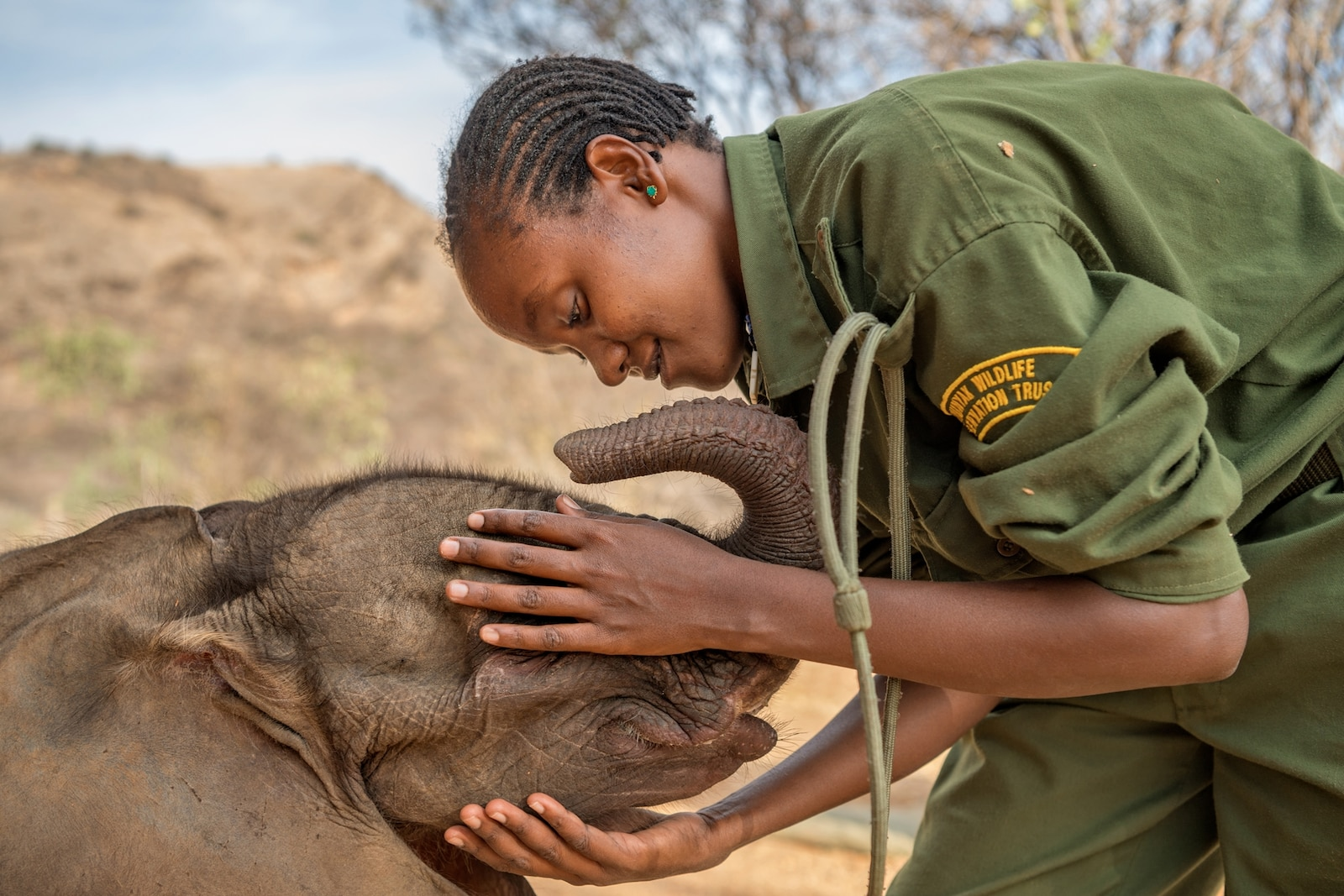 an elephant sanctuary in Africa