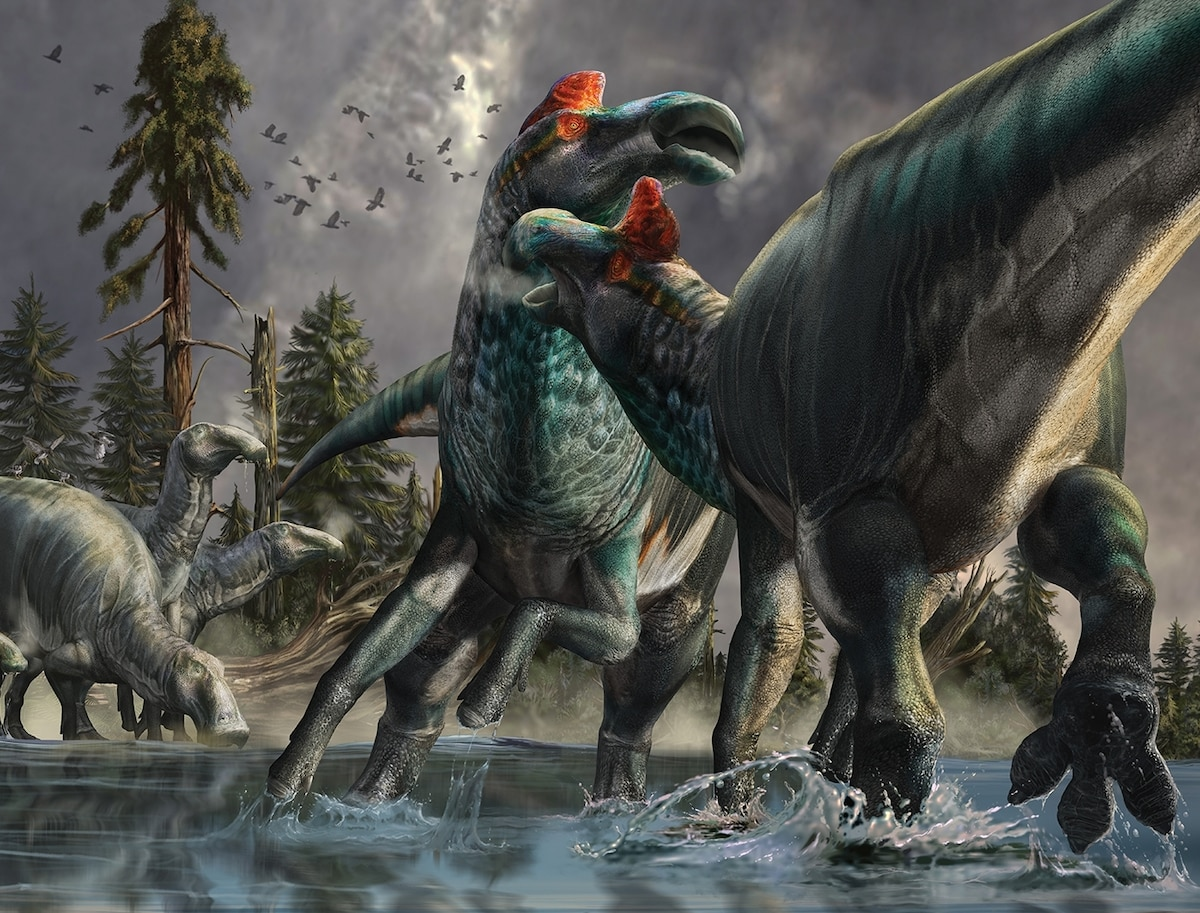 See how we're reimagining dinosaurs in today's 'golden age' of paleontology
