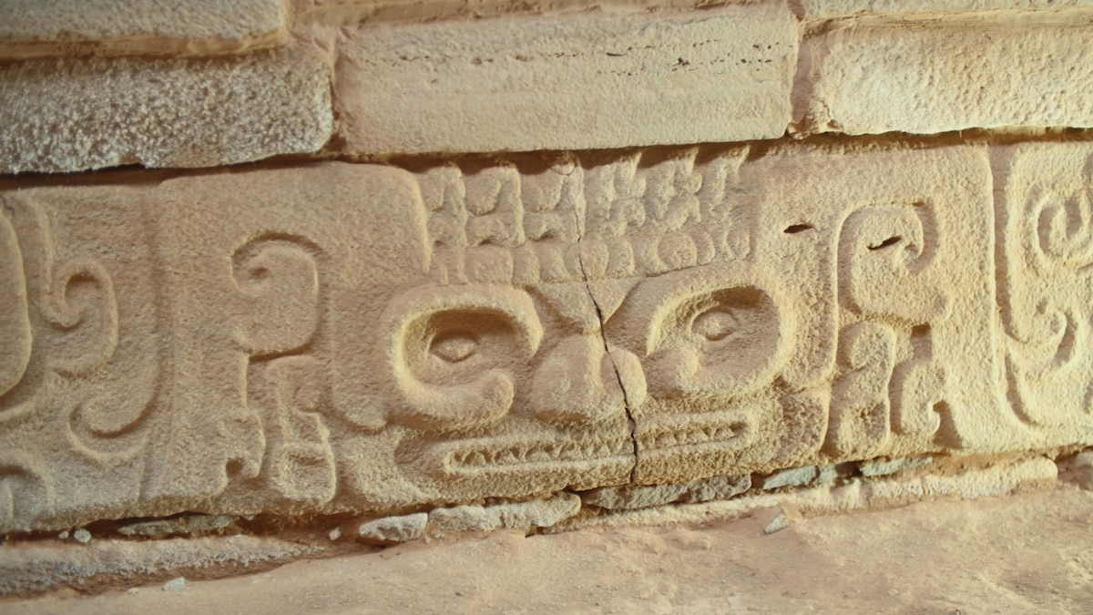 Mysterious carvings and evidence of human sacrifice uncovered in Shimao