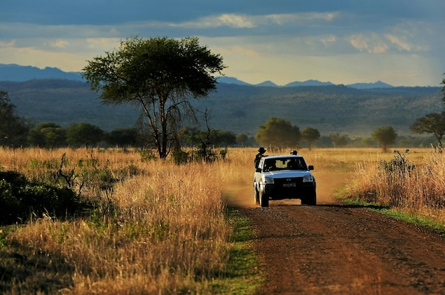"""Wardens drive through Mikumi National Park, bordering the Selous Game Reserve, in 2013. """"There are really good people on the ground sweating blood"""" trying to stop the poaching, says Mary Rice. """"But they're being undermined by a system that repeatedly fails them."""" Photograph by Daniel Hayduk, AFP/Getty"""