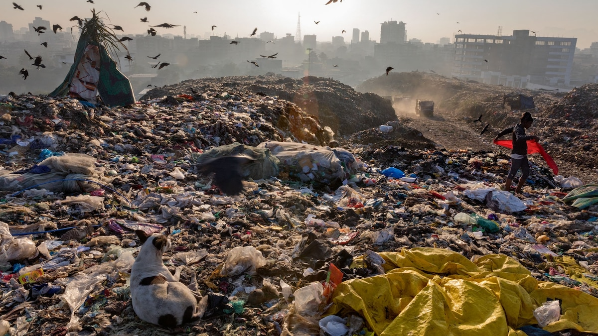 We Depend on Plastic. Now We're Drowning in It.