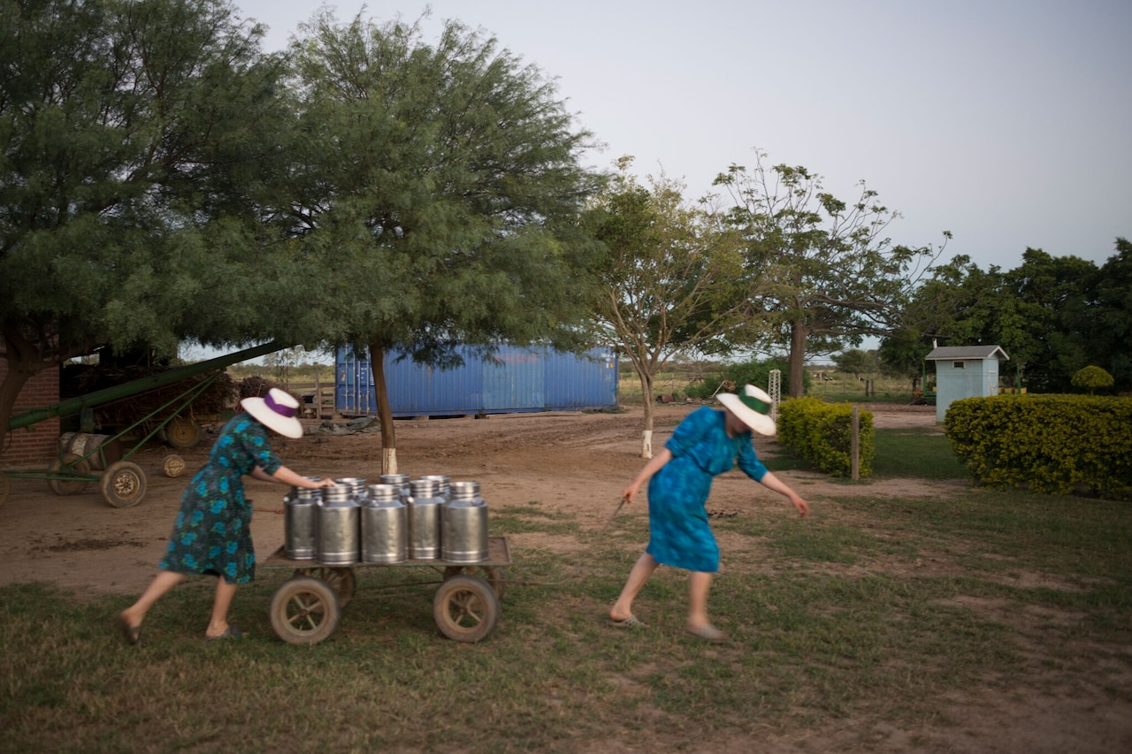 After milking the cows, two of Abaham Penner's daughters move the milk to the front door, where the milkman will take it to the cheese factory. Colonia Oriente, Bolivia. 2013