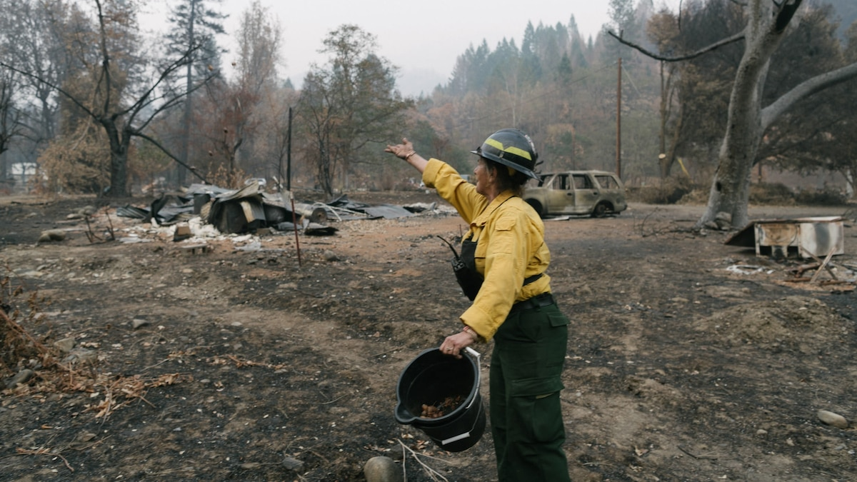 An Indigenous practice may be key to preventing wildfires