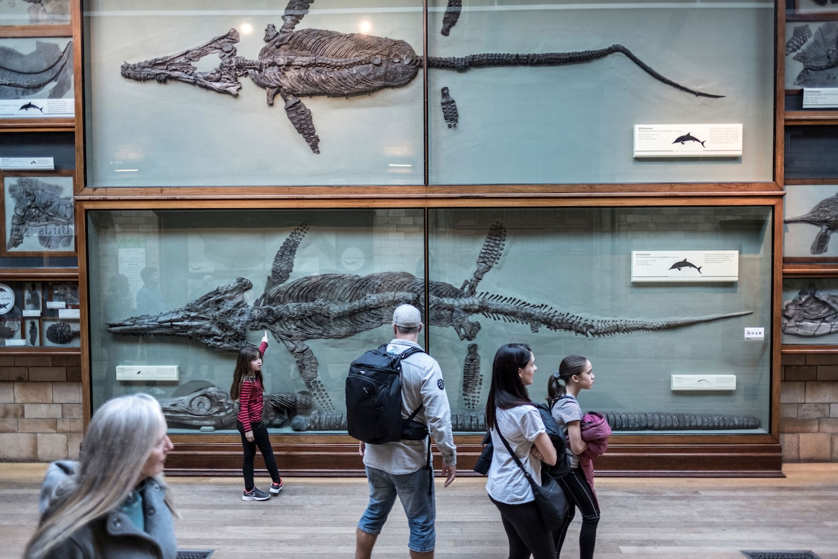 Mary Anning: The forgotten fossil hunter who transformed Britain's Jurassic Coast