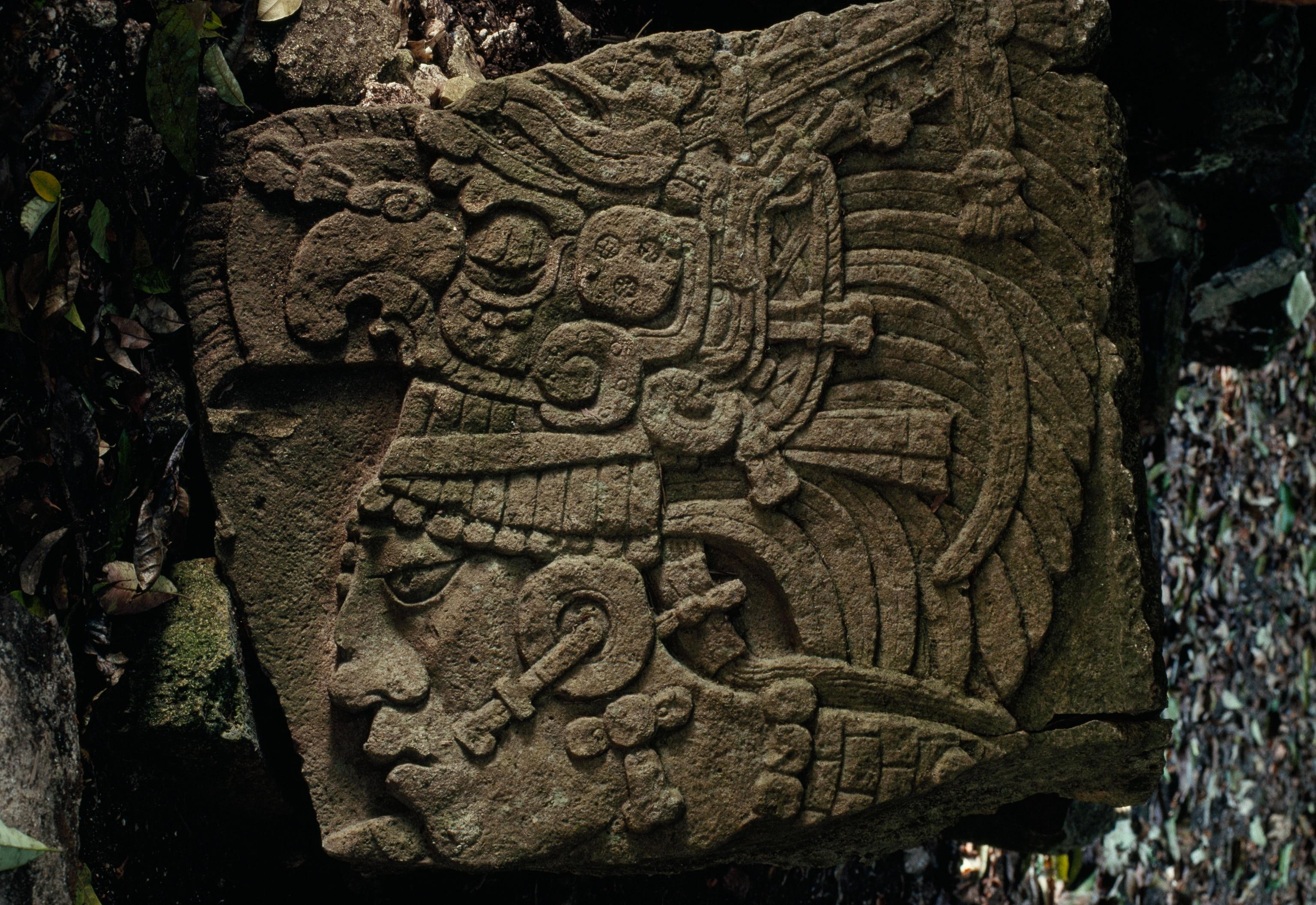 Mayan Warrior | Nat Geo Photo of the Day