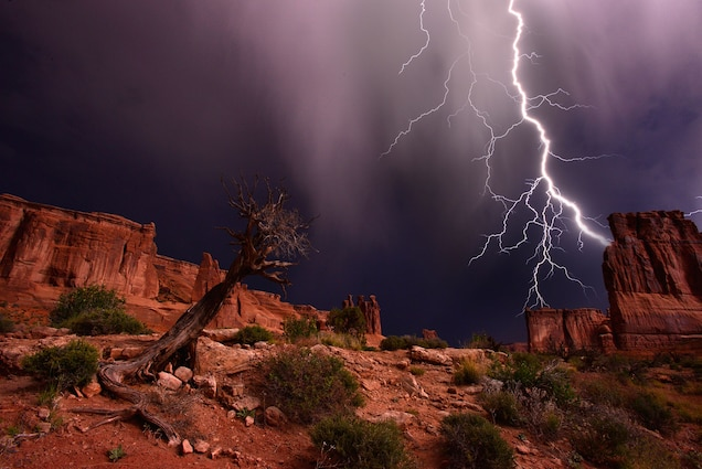 How To Survive A Lightning Strike Stay, Great Outdoors Lightning Strike