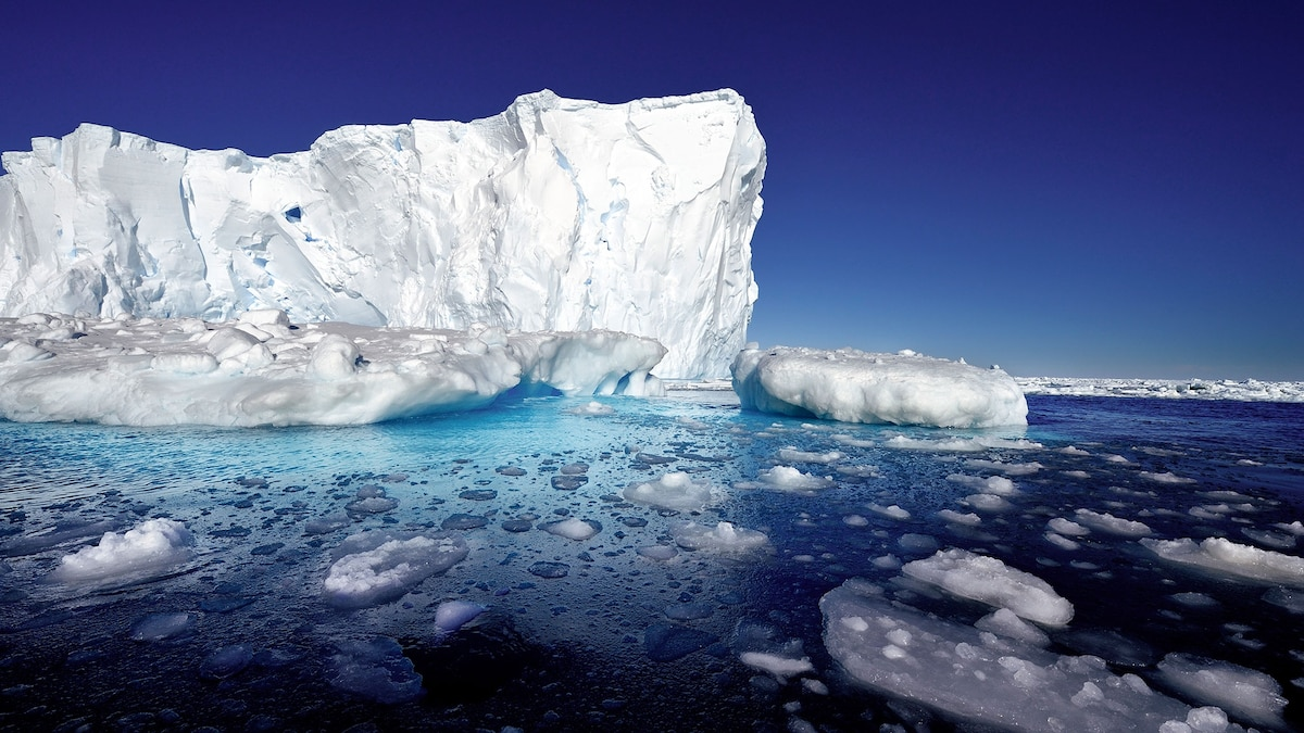 www.nationalgeographic.com