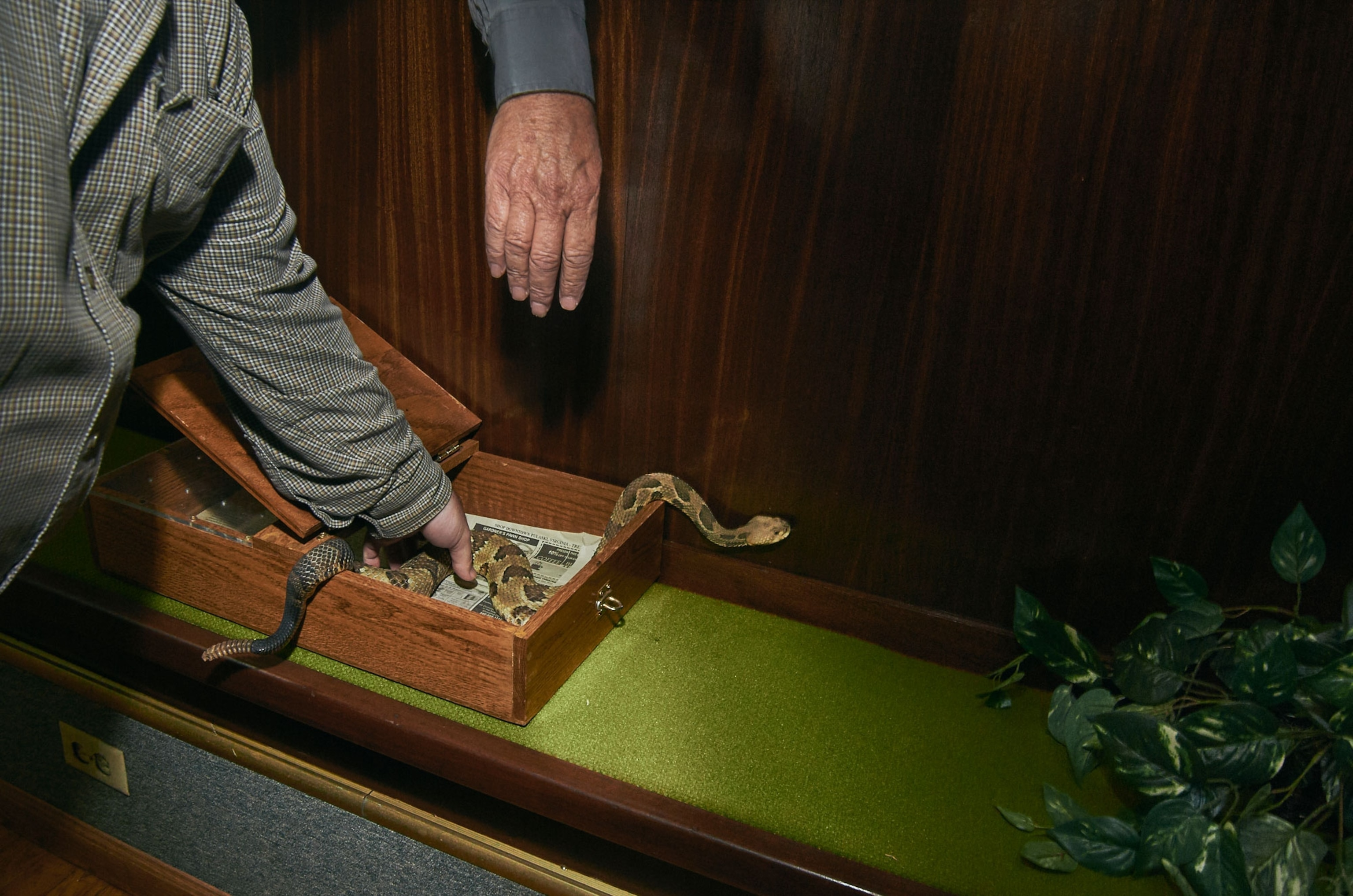 Snake Handlers Put Their Faith In God And Increasingly Doctors