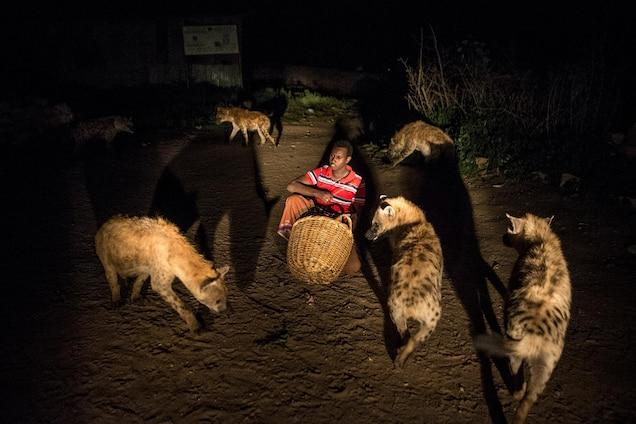 Abbas feeds hyenas outside his home in Harar, Ethiopia.